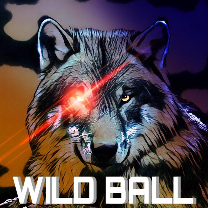 WILD BALL